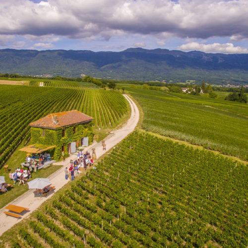 Le Rallye Gourmand est un parcours de 10 km dans la campagne genevoise à la rencontre des produits du terroir.